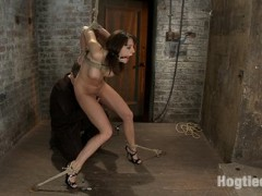 Welcome Chanel Preston to Hogtied.  Hogtied continues to deliver the freshest faces and most beautiful girls in hardcore bondage in the world. Chanel Preston meets The Williams for her first brutal rope bondage shoot.  She has been bound before, but this is the first time where the bondage is part of the suffering.  We bind them tight at Hogtied, make no mistake.At 5'9 this long-legged beauty is simply stunning.  Her perfect body struggles helplessly in the tight ropes as we work her over sexually.  From hard flogging to heavy nipple clamps and weights, this girl next door moans though her tight gag as we ramp up our attack on her nubile body.  By the time we bring out the vibrator her pussy is soaked and it doesn't take long before she is made to cum over and over, moaning and desperately trying to stop us from making her cum any more. She fails...video
