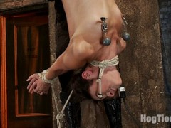 Live Show Mondays begins the month with part 2 of 3 of our October live show with hot-bodied co-top Isis Love and tough Amber Rayne. We slide quickly into the second tie of the day.  It is rare to find models that can do what we did next.  This Category 5 suspension is a tribute to a tie that Clair Adams did for Hogtied some years back.  We felt it worthy of reincarnation since we had the Amber in our grasp.The difference this time is you get to see how we tied it.  We explain the tie and step you though the process.  No other site brings you on screen tying and tutorials as much as Hogtied.Not much to add as the pictures and preview says it all.  A brutal tie, a tough girl, nipple torture, and we make Amber cum and cum hard.  This is rope bondage porn, at its best!video
